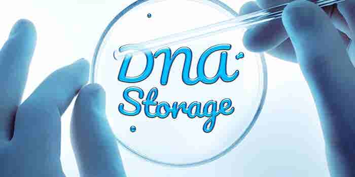 Need Extra Storage? Try DNA.