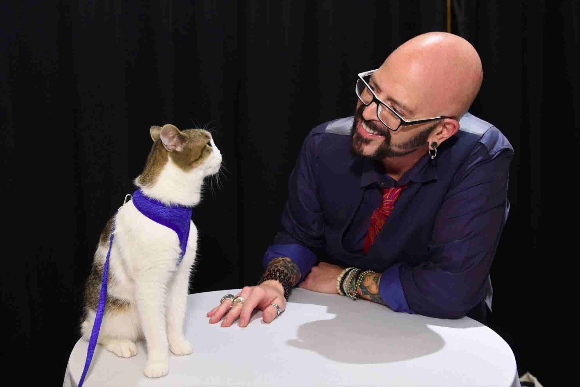 'Catpreneurs' Unite at New York's First 'Cat Camp' Symposium