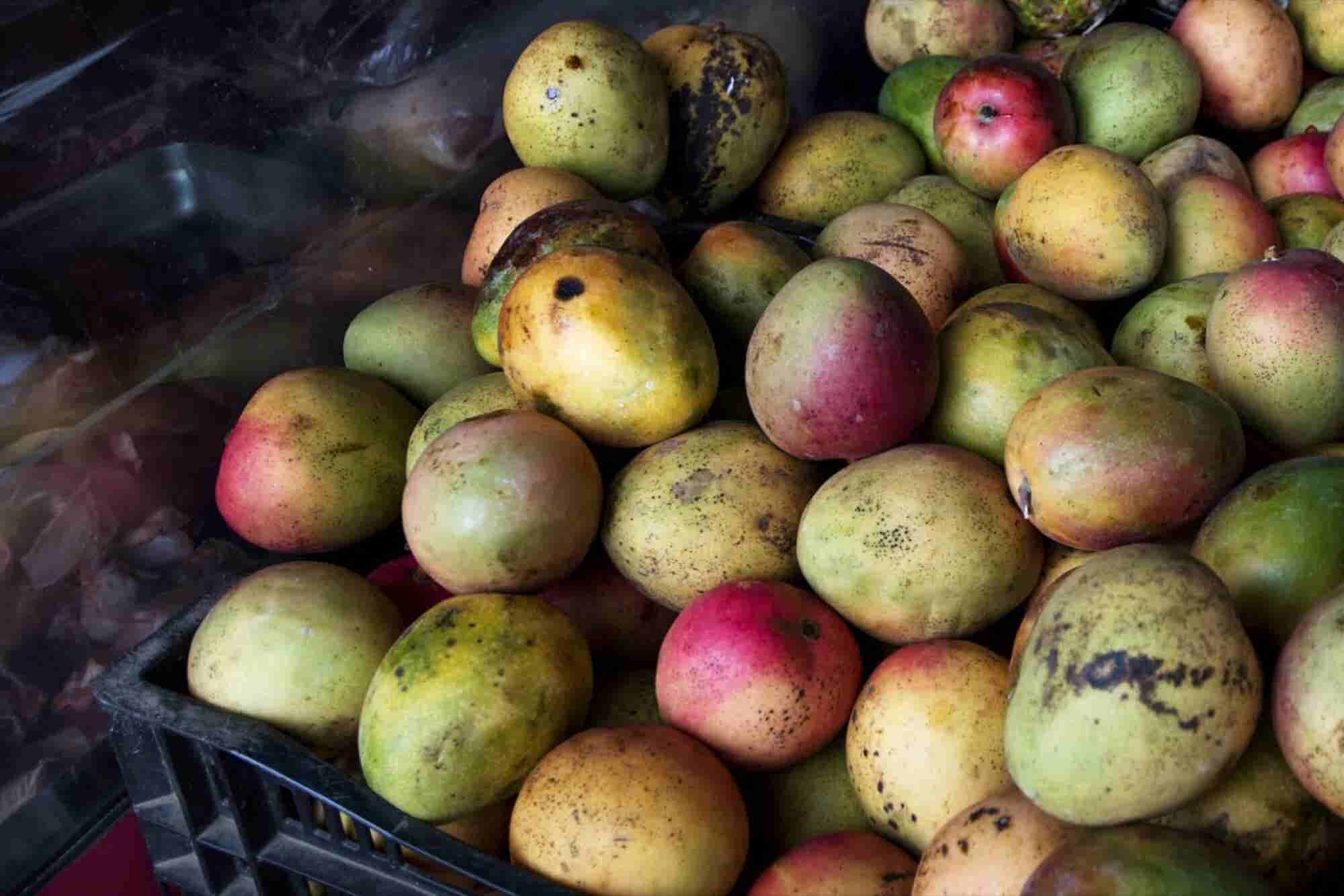 What You Can Learn About Business From a Mango Vendor in Fiji