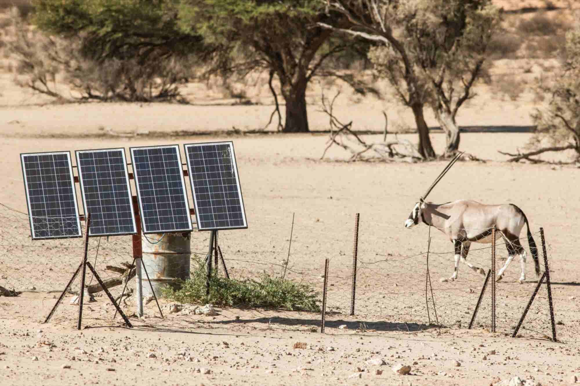 4 Lessons for Entrepreneurs From Africa's Solar Industry