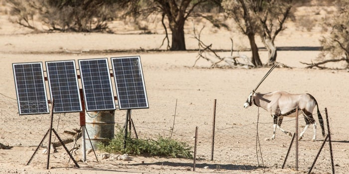4 Lessons for Entrepreneurs From Africa's Solar Industry