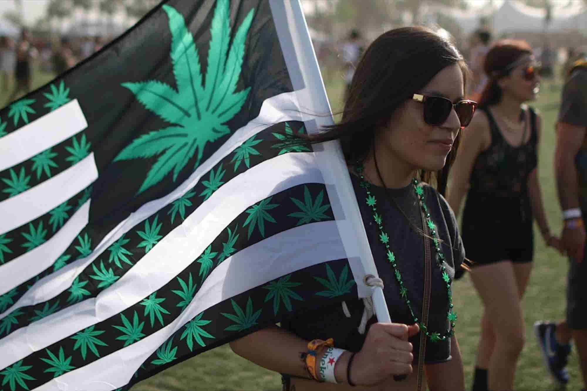 It's Lit! Cannabis Trends and the Pitfalls of 'Potrepreneurship.'