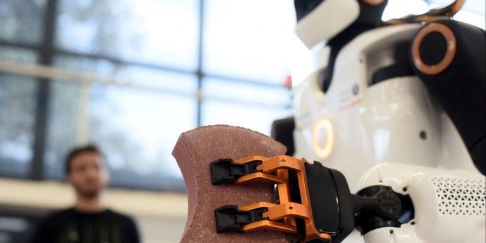 Will a Robot Take My Job?