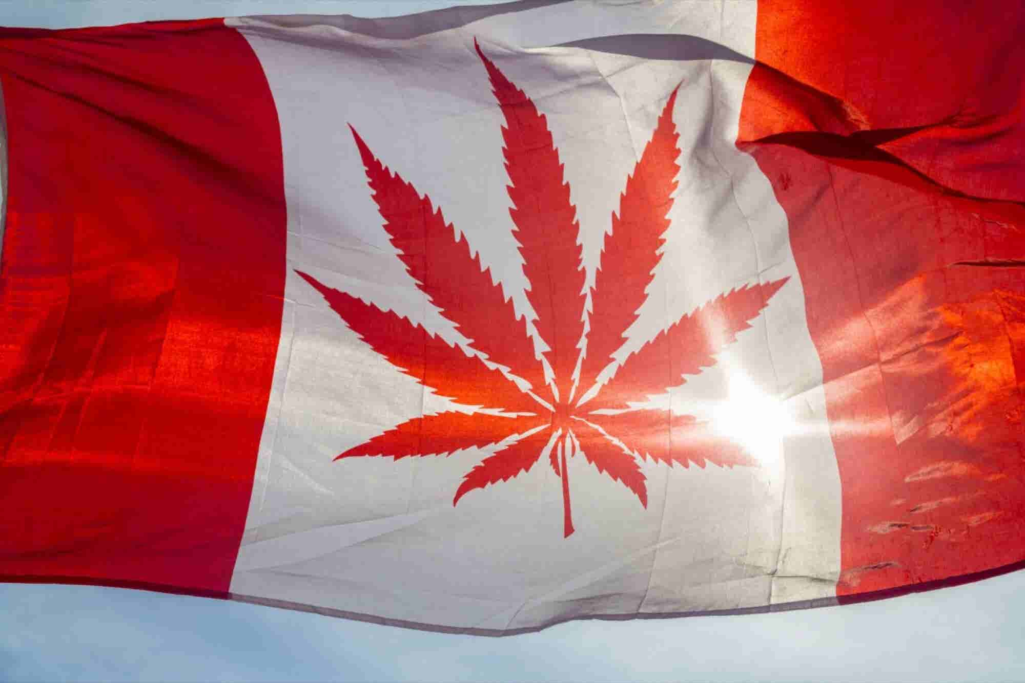 Legalize or Demonize: Leaders in Canada, US Have Very Different Views...