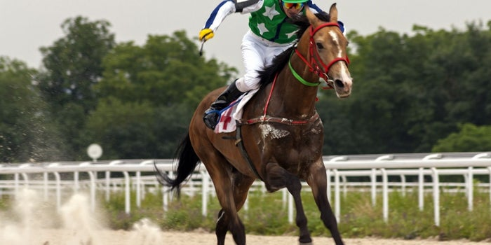 For Startups, Do You Bet on the Jockey or the Horse?