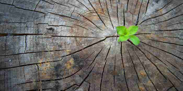 3 pasos críticos para reinventarte