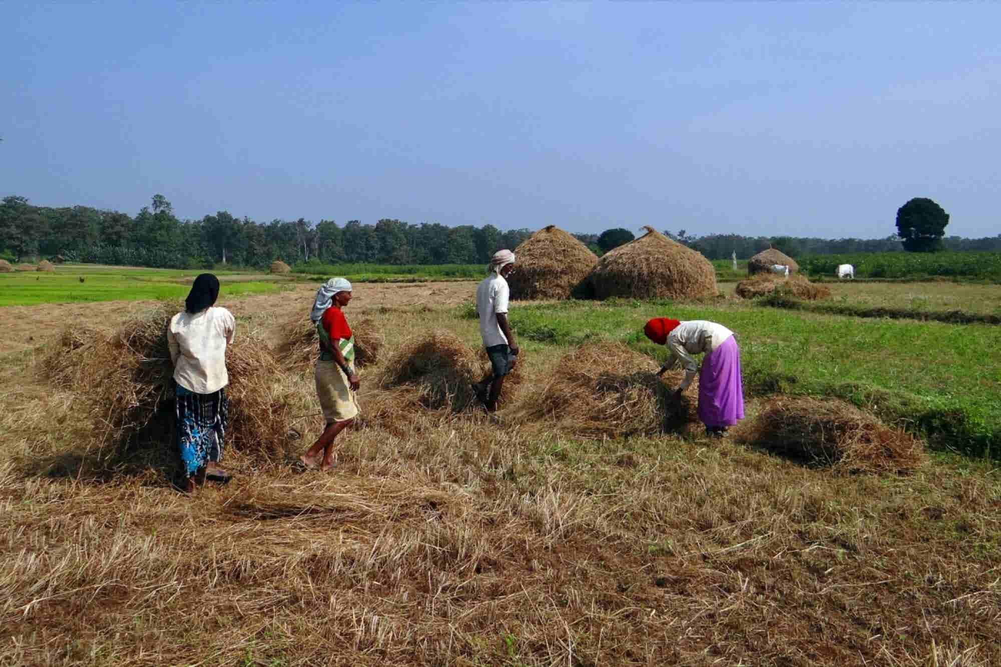 This Agri-tech Entrepreneur Says Indian Farmer is Not Averse to Technology