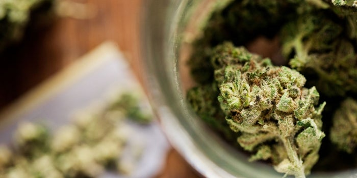 Legal Marijuana Sales Surpass Viagra, Tequila and Girl Scout Cookies