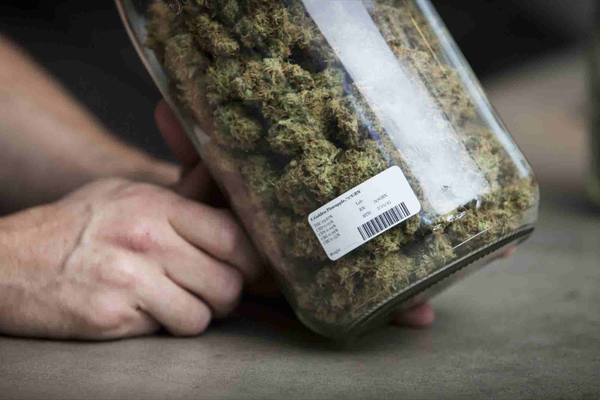 First Year of Recreational Marijuana Sales Are a Tax Windfall for Oreg...