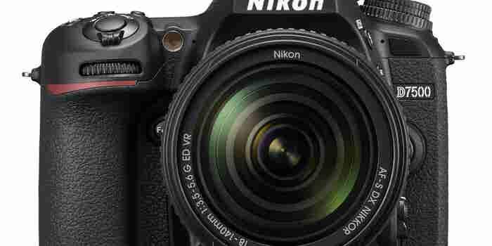 Picture Perfect: Nikon D7500