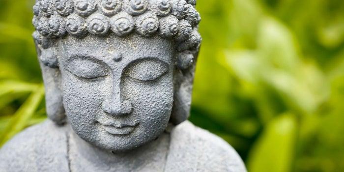 20 Frases Budistas Para Vencer El Miedo