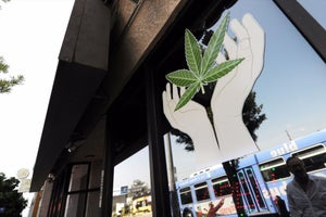 Report Foresees $5B Legal Cannabis Industry for California