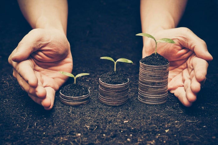 How Can Early-stage Start-ups Manage Their Finances