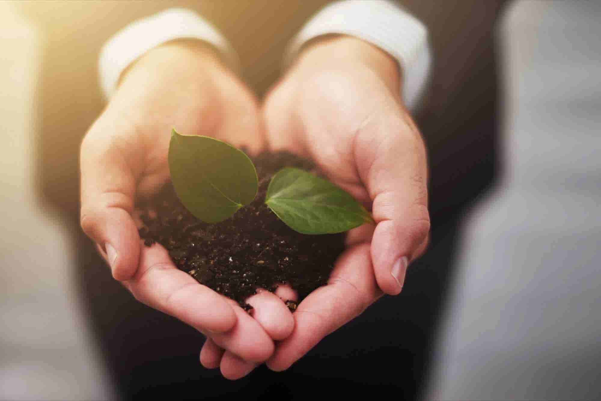 3 Things You Need to Do to Grow Your Business Naturally