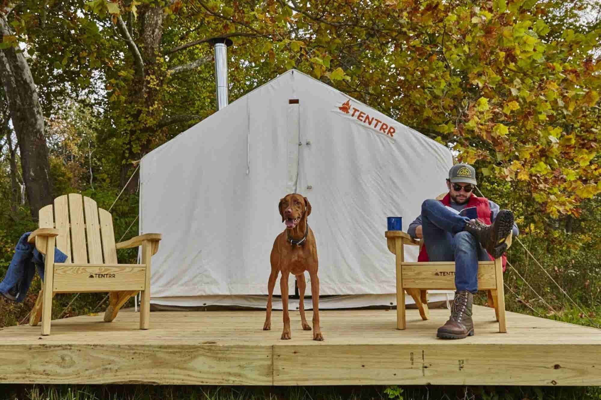 Check Out the Airbnb Camping Experience for Owners and Their Dogs