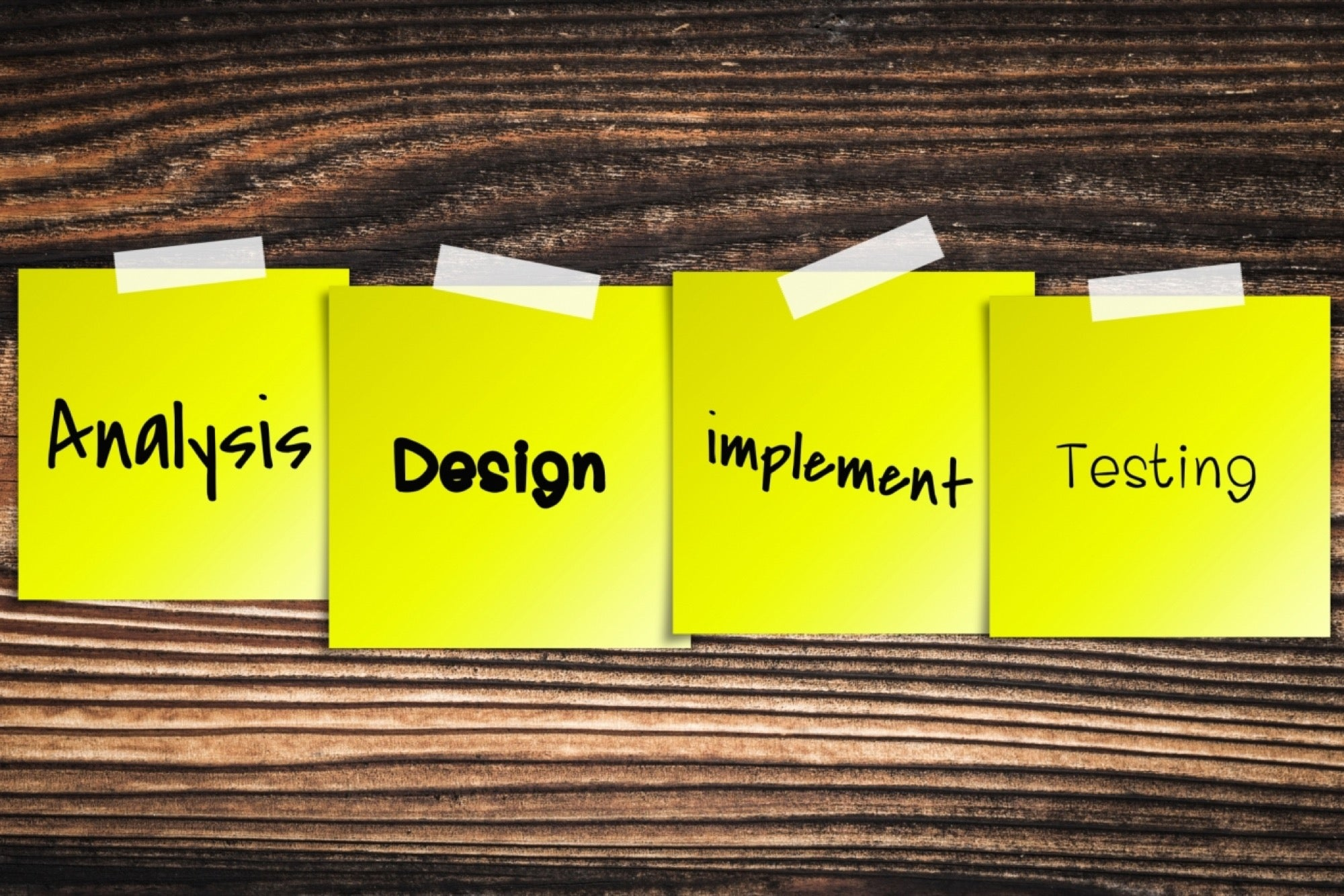 Here's How You Can Get a Perfect Software Development Team