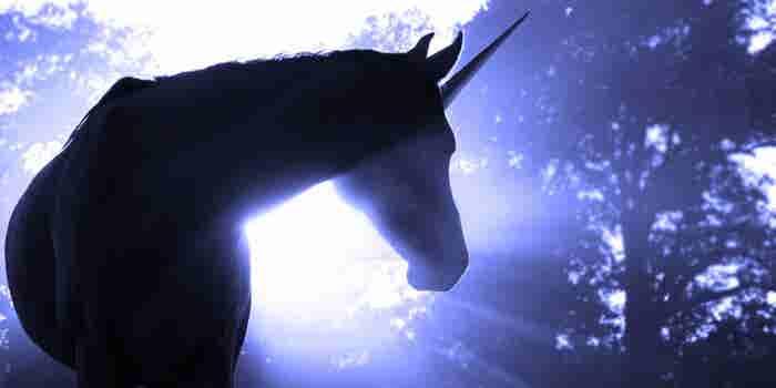 10 unicornios que levantaron 18 mil mdd en los últimos 18 meses