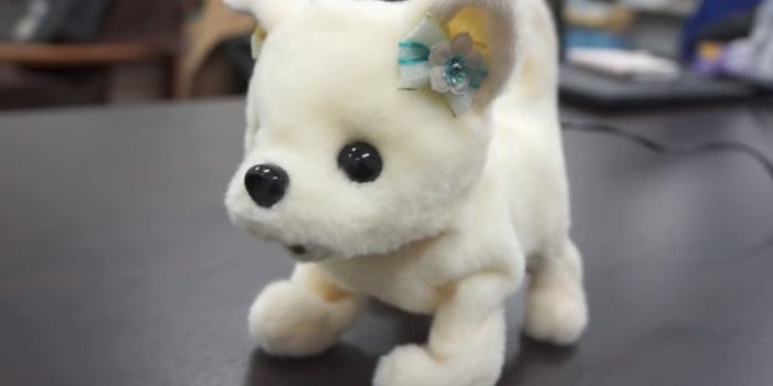 This Adorable Robot Puppy Will Tell You If Your Feet Smell