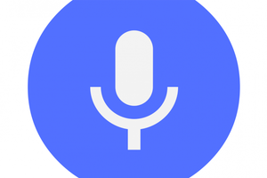 The Evolution of Voice Search Feature