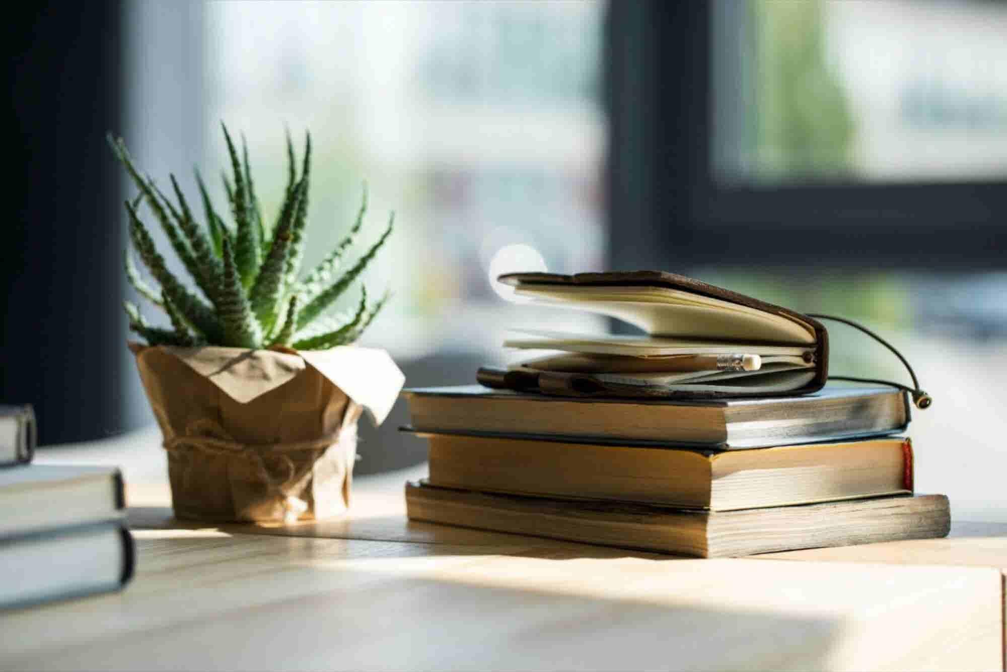Tres libros básicos para emprendedores novatos