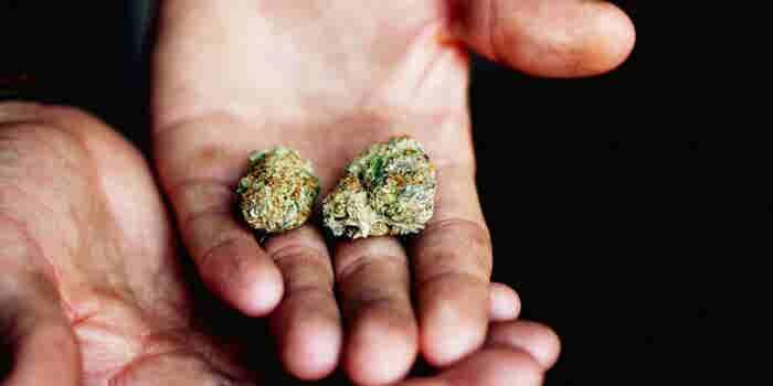 Some Universities Offer Classes On Marijuana. LSU Plans to Grow It.
