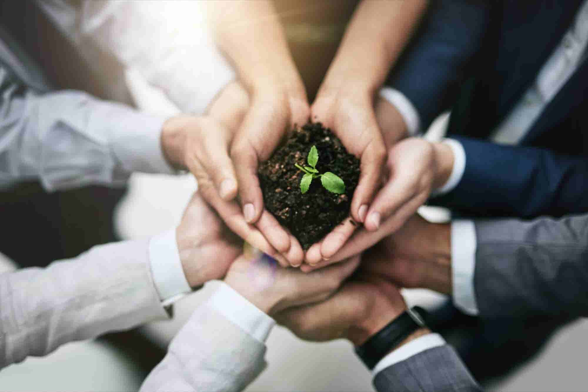 You Don't Have to Be All That Corporate to Make an Impact With Corporate Social Responsibility