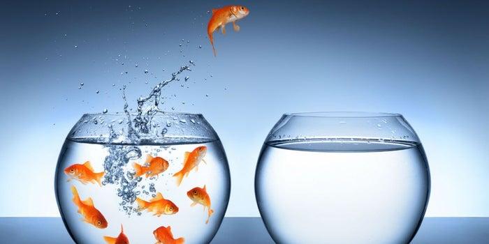 Disruptivo APRENDE, el paso entre querer emprender y saber cómo