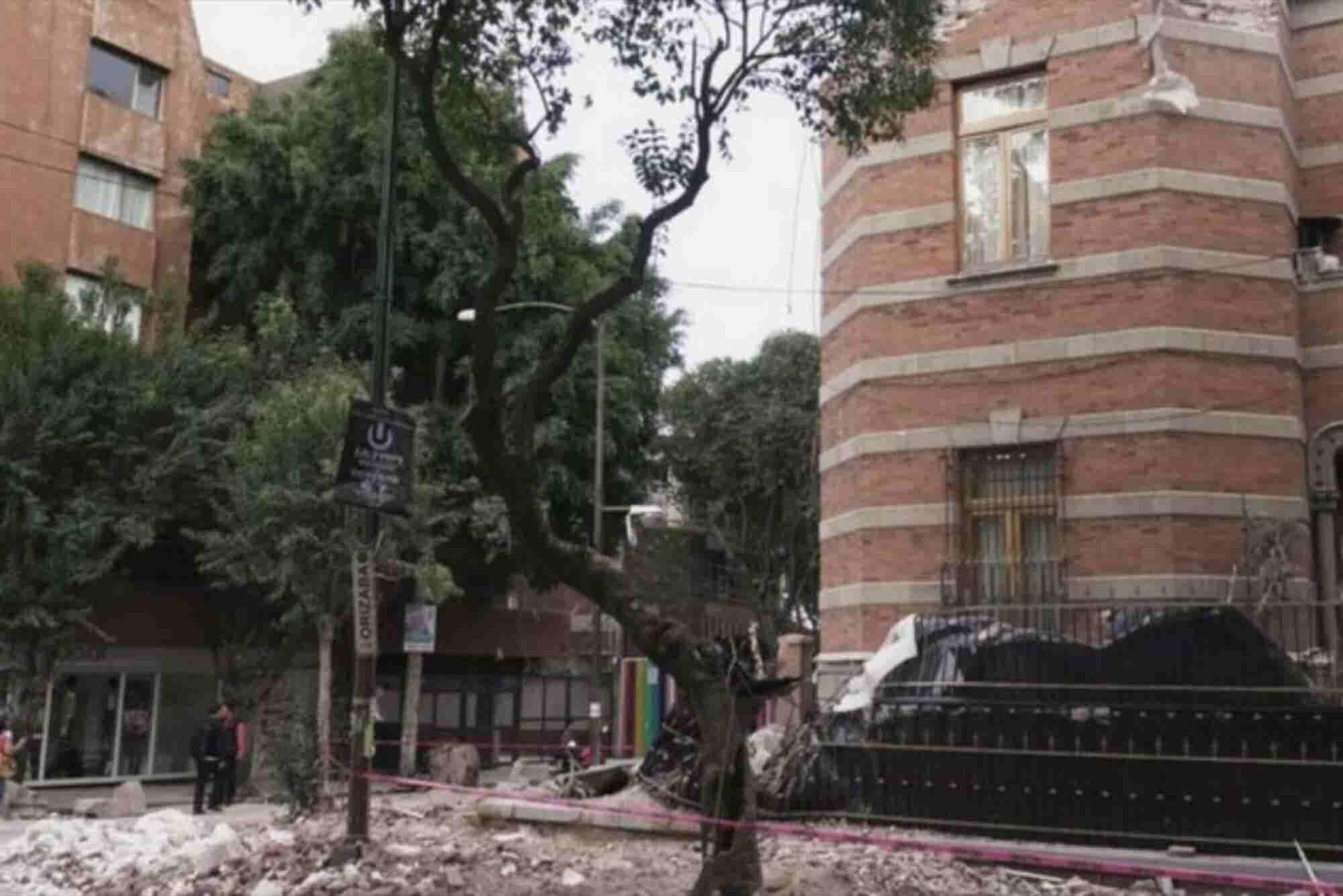 La estrategia de Bien para Bien para levantar a las Pymes de la Roma y Condesa