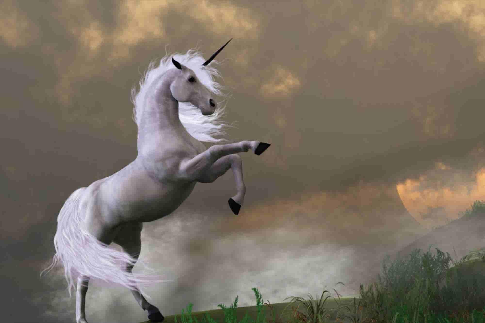 Haz estas 4 cosas para convertirte en el unicornio de tu industria