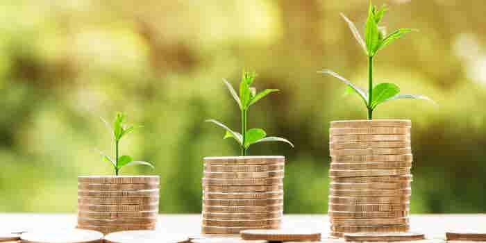 Haz crecer tu dinero con esta startup