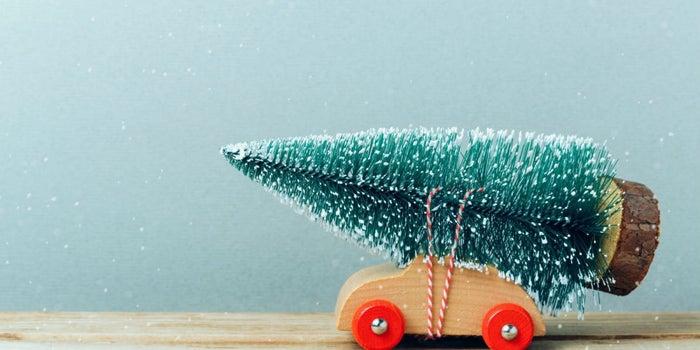 Abre un negocio de reciclaje de árboles de Navidad