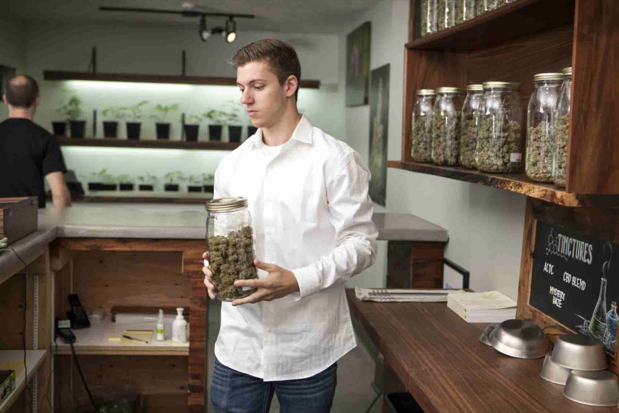 Cannabis Industry Likely to Employ More Than 400,000 By 2021, Study Pr...