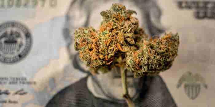 Investment In Marijuana Industry Has Grown 600 Percent so Far in 2018