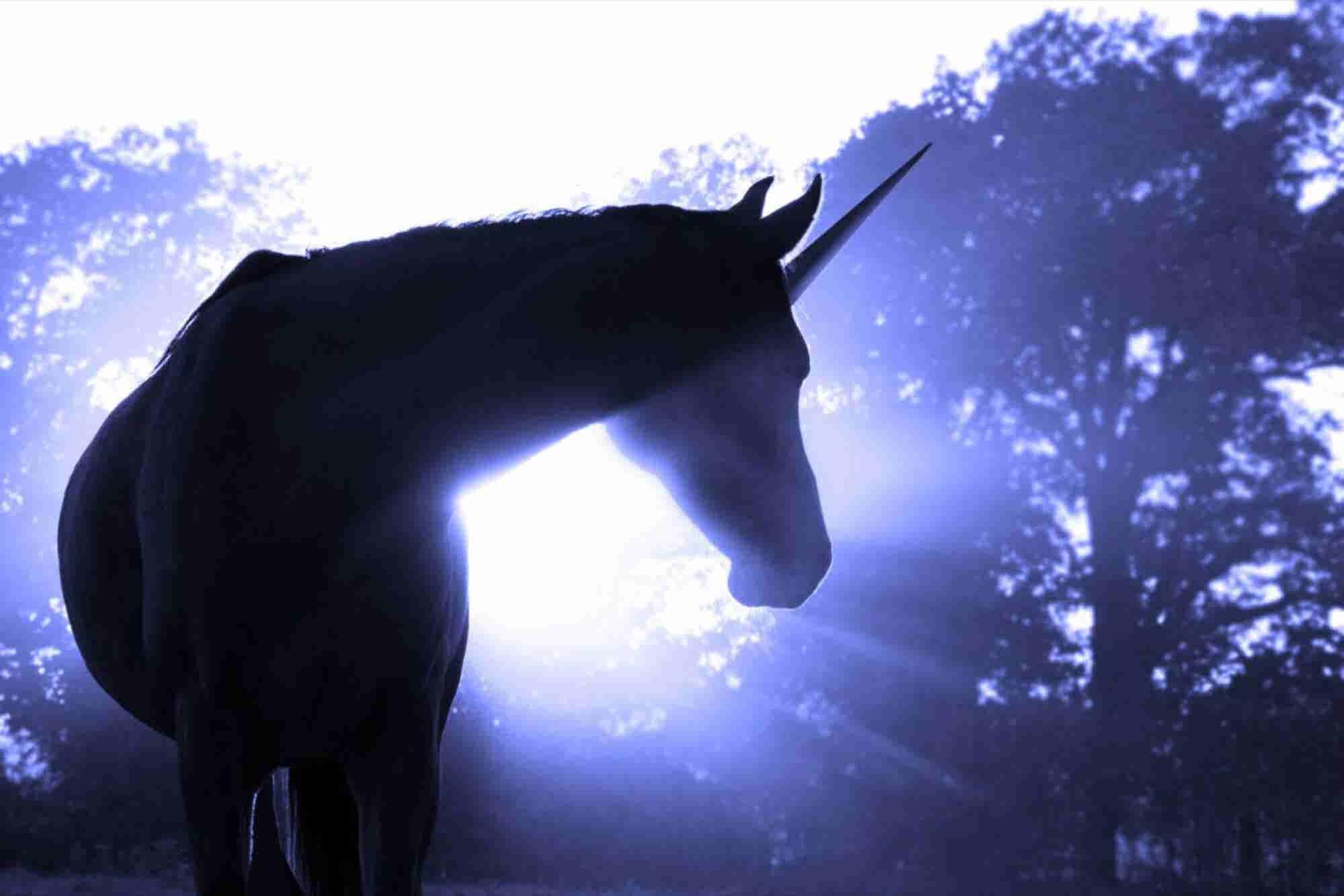 Unicornios en la Bolsa, ¿el debut o la muerte de una startup?