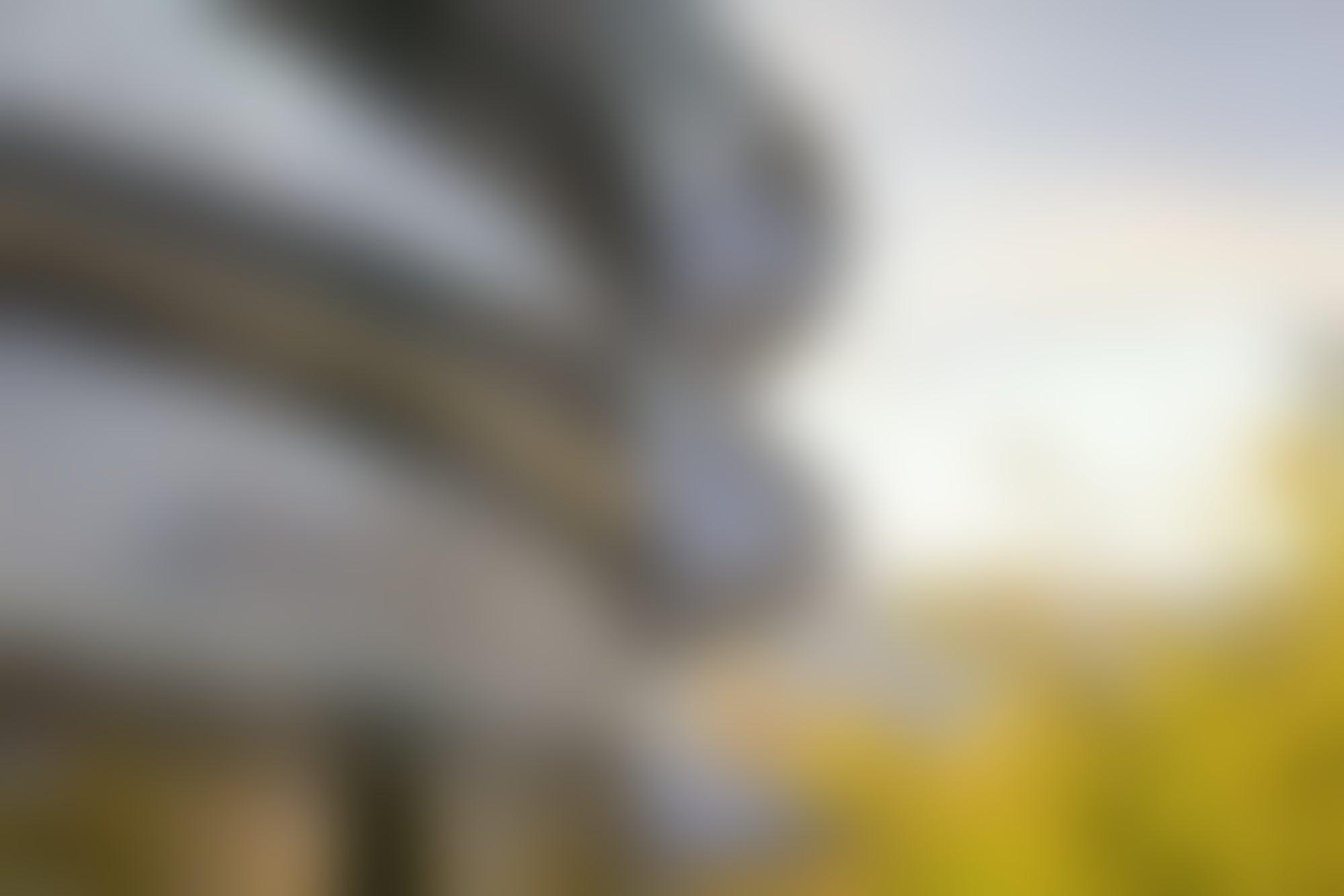 Por qué la gente se estrella en los vidrios del nuevo cuartel de Apple
