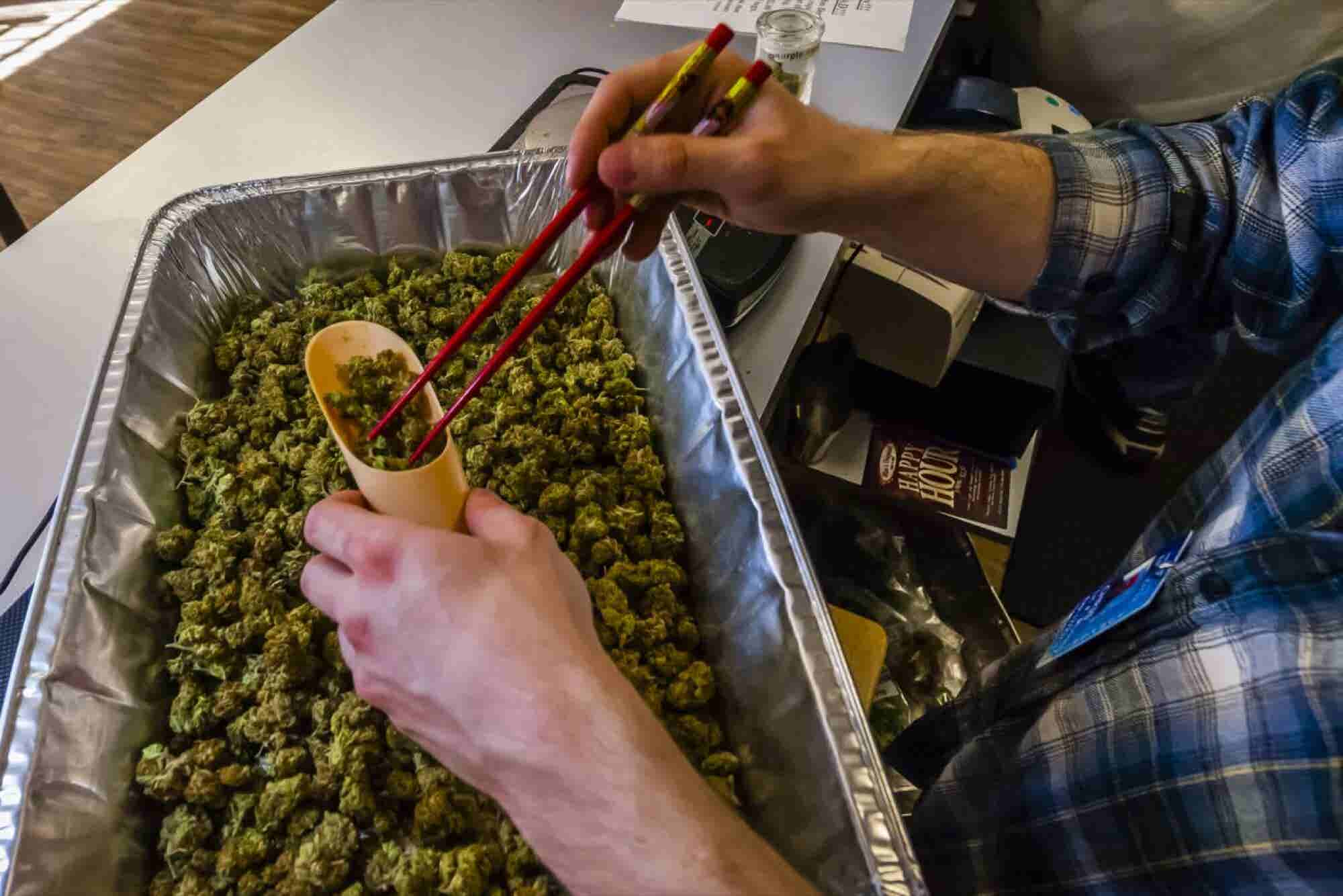 A Study of One Colorado County Finds Legal Marijuana has More Benefits Than Problems