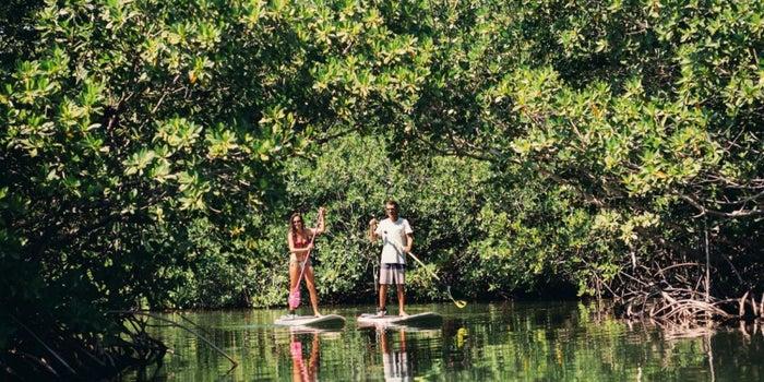 ¡No todo es CDMX! Airbnb lleva sus experiencias al Caribe