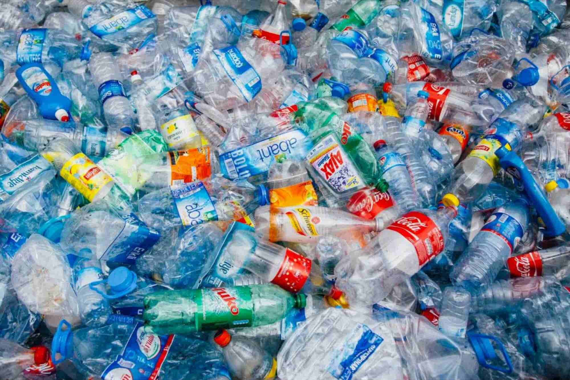 Scientists Accidentally Produce an Enzyme That Devours Plastic