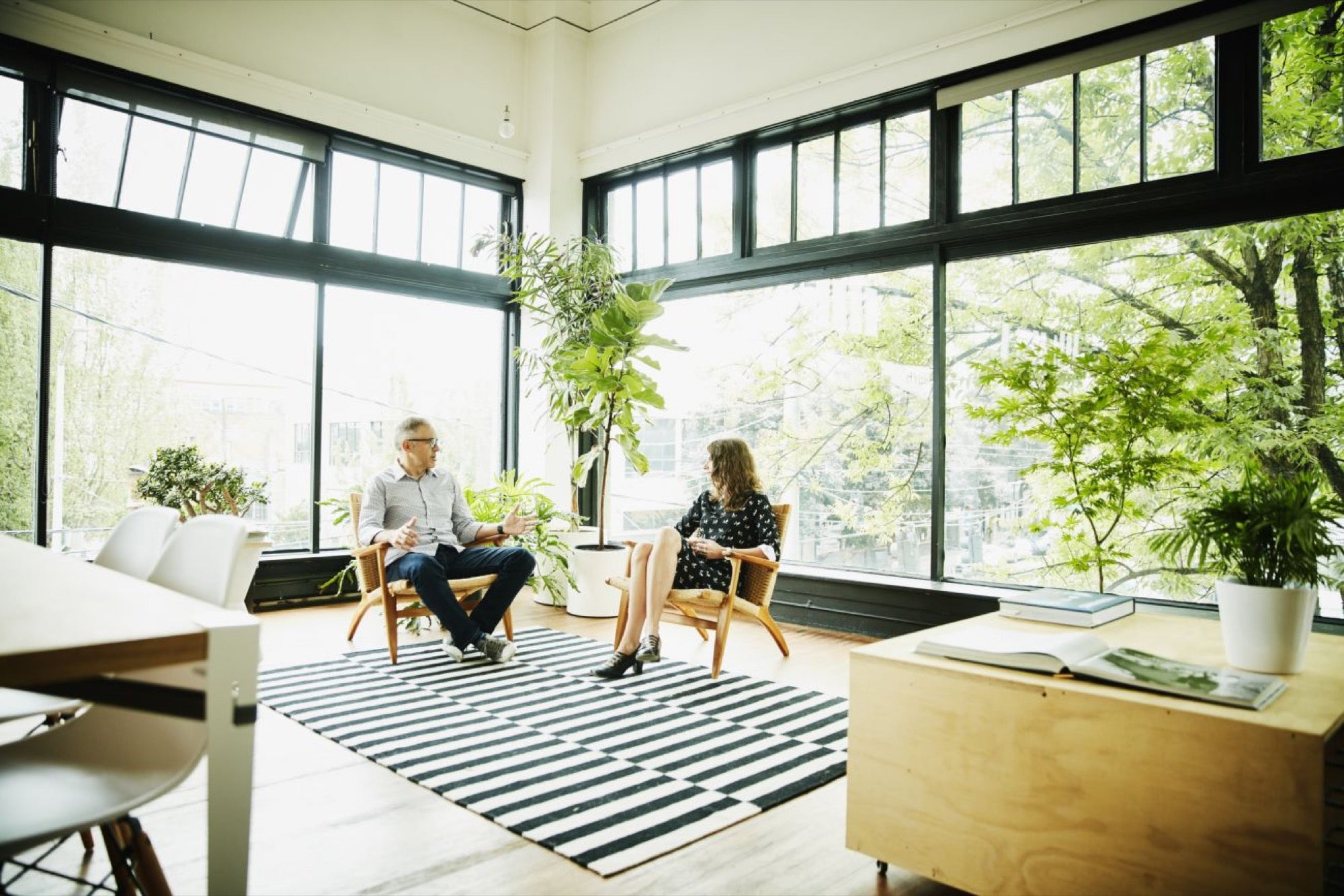 How To Add Plants To An Office To Make Employees More Focused And Productive
