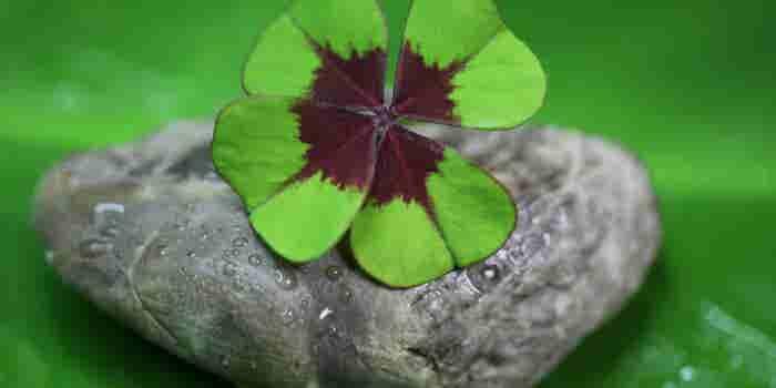 El secreto de la 'suerte' emprendedora en 3 simples pasos