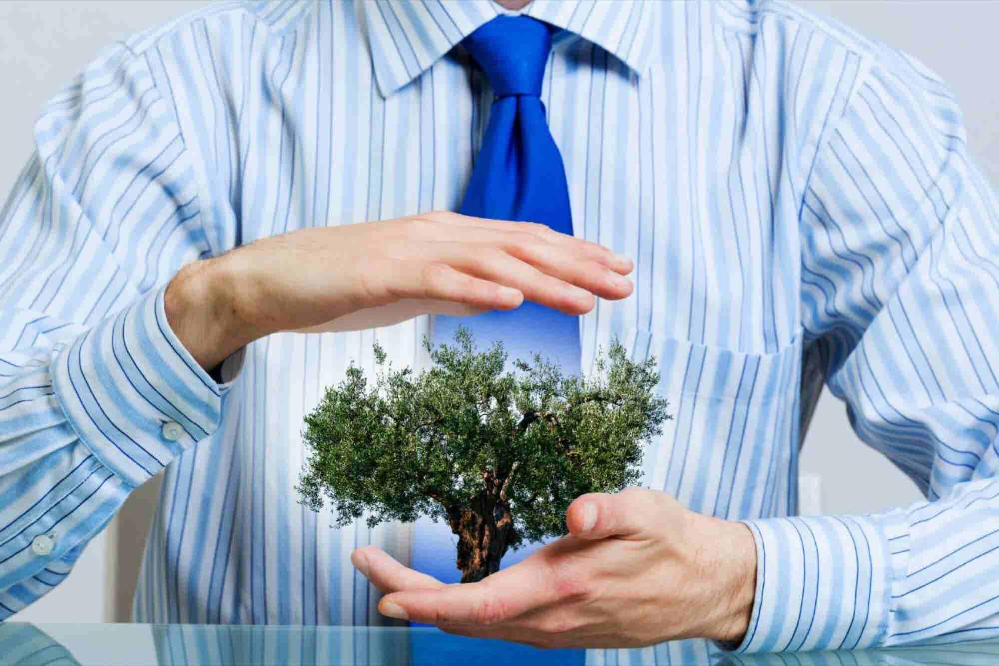 Entregan reconocimiento a emprendedores forestales