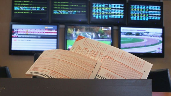 Sports betting business for sale triple crown races 2021 betting