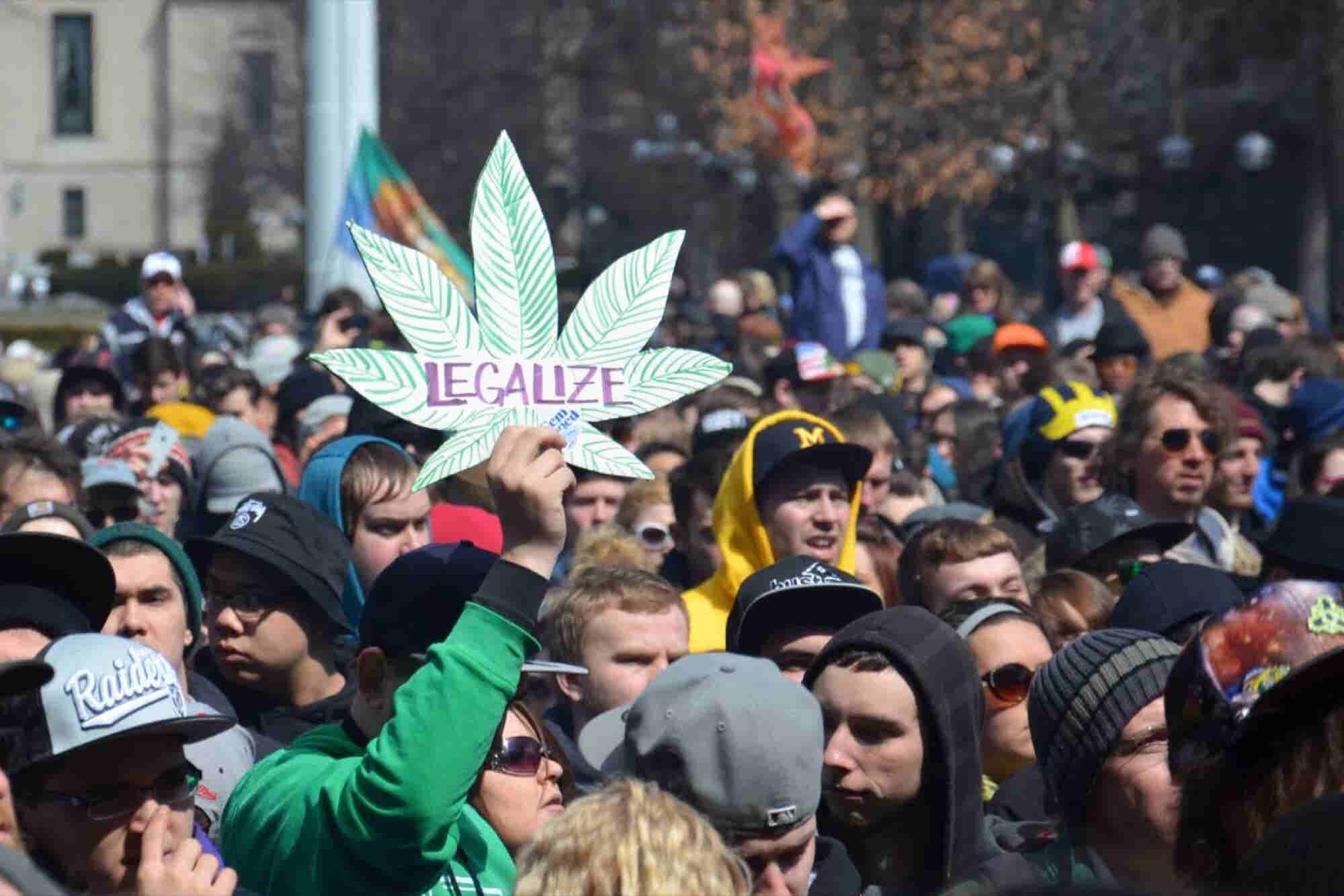 Activists Secure Marijuana Legalization Measure on Michigan's Ballot T...