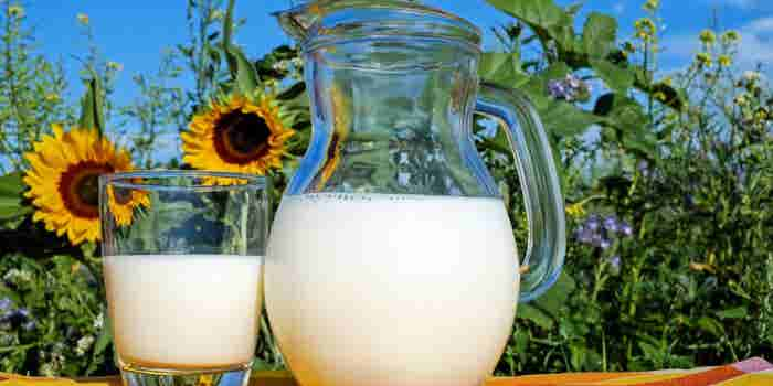 Analysing the Need for Digitization in Milk Distribution