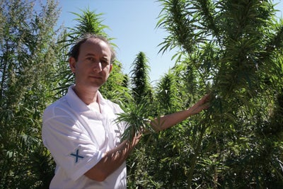 Is Hemp a Superfood? This Enterpreneur Bets His Business On It