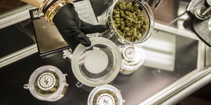 How to Scale Your Cannabis Business in 4 Steps
