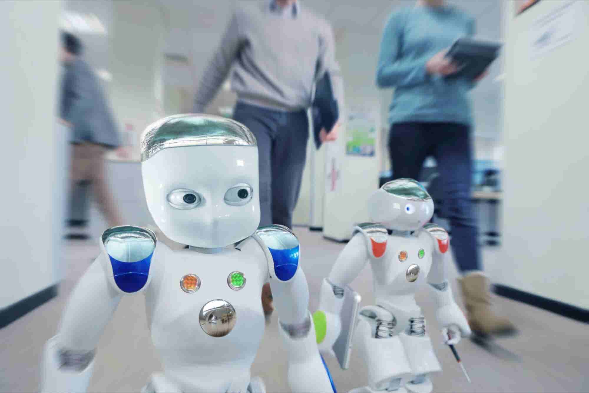 What Will the Future of Work Look Like After the Robot Revolution? (In...