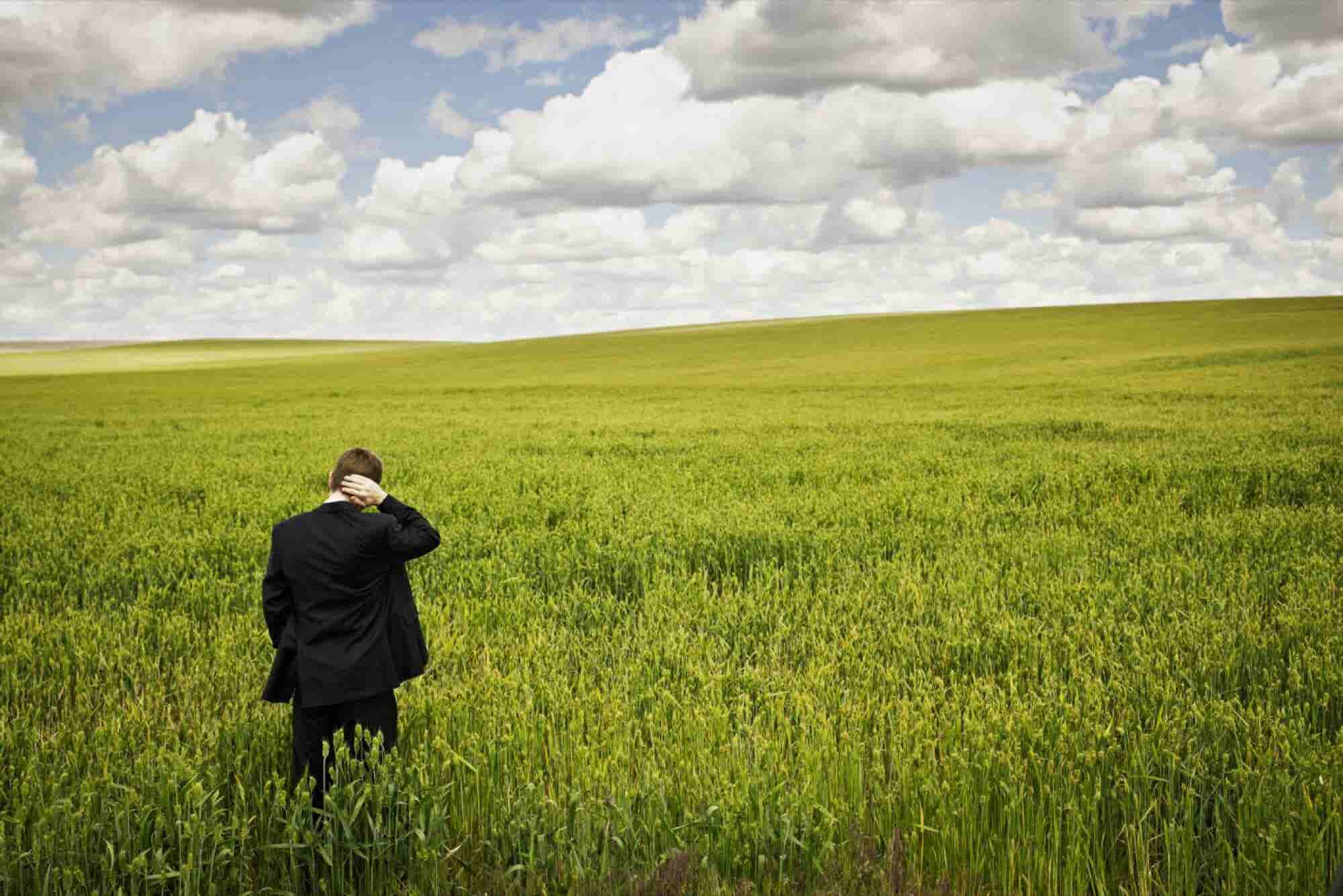 Thinking of Pursuing Greener Pastures? 3 Questions Entrepreneurs Should Ask Themselves Before Taking That Plunge