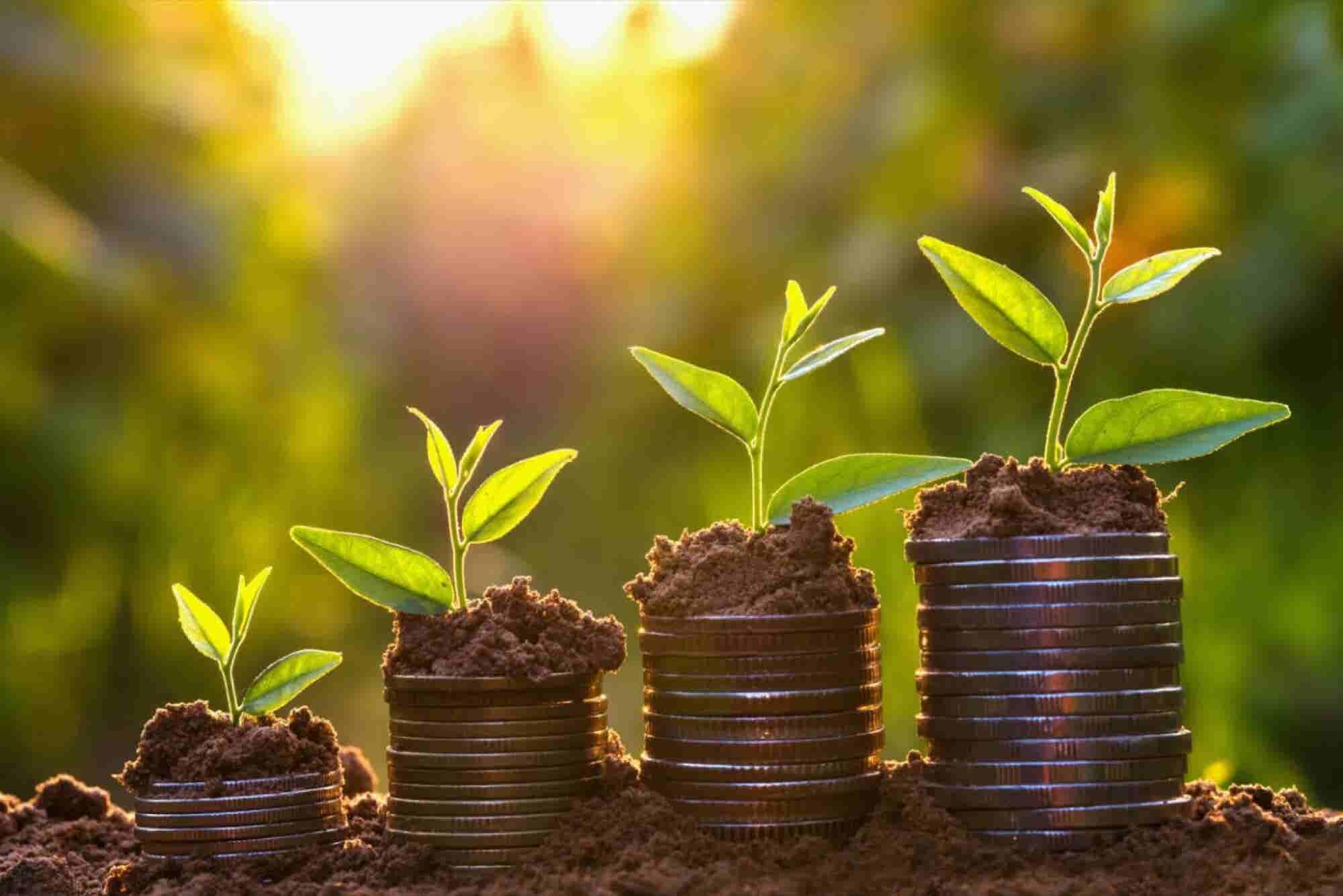 Tus activos intangibles: el núcleo de crecimiento de tu negocio