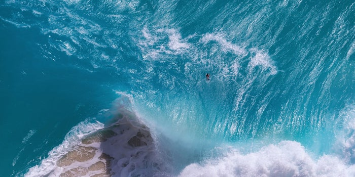 6 Startups That Are Helping to Save the Oceans While Still Making Money